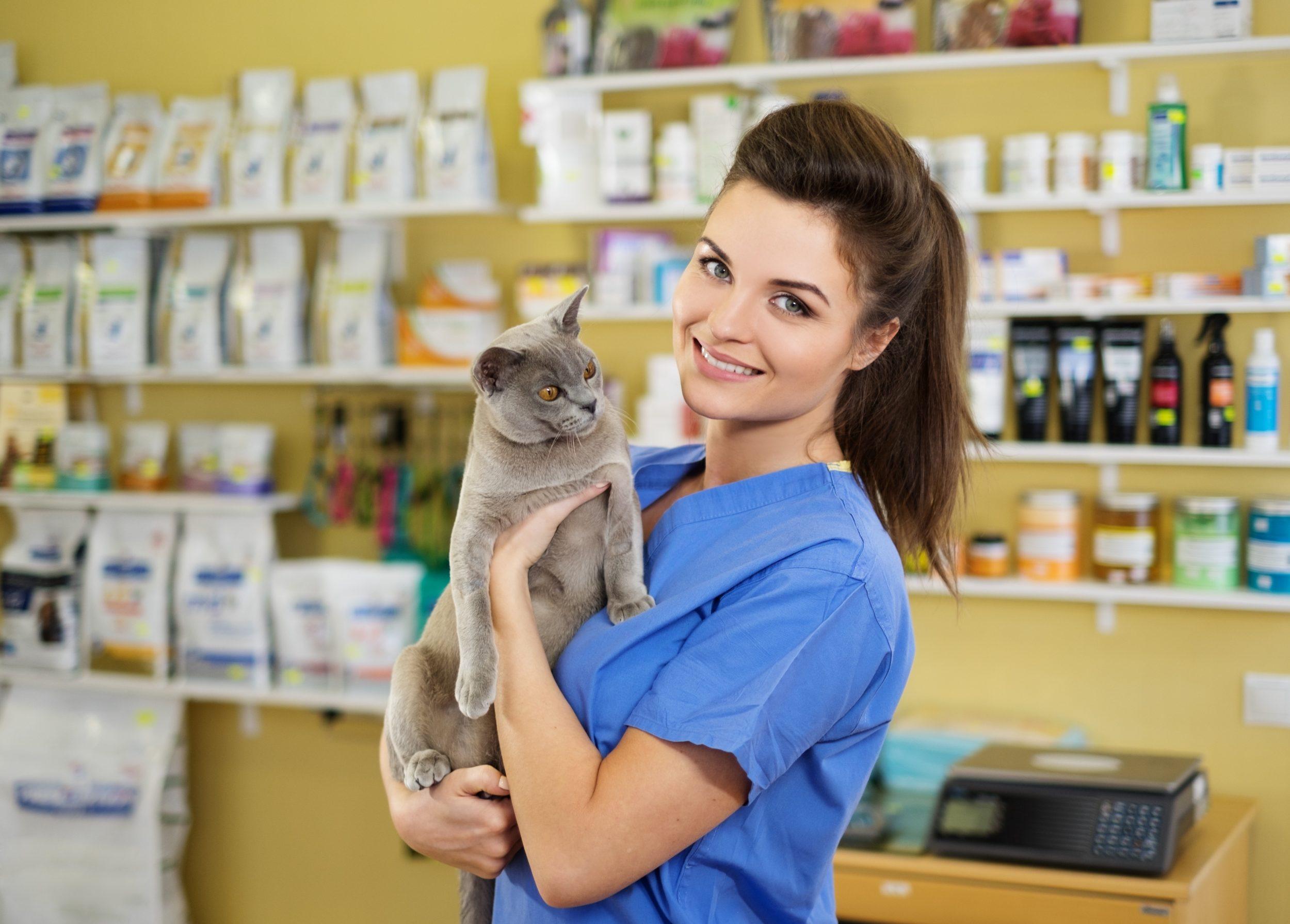 Pour les cliniques vétérinaires